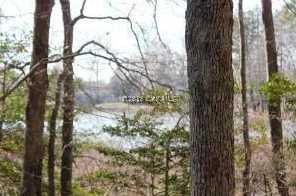 Woodland Dr - Photo 4