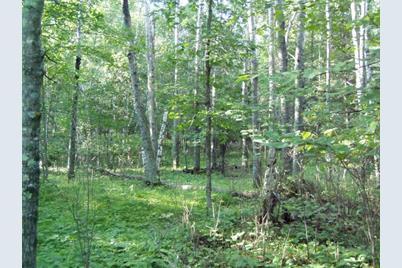 Lot 9 Blk 1 Falliong Leaf Trail - Photo 1
