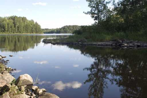 5953 Voyageurs Trail - Photo 14