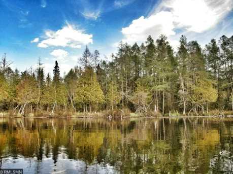 Tbd Fox Lake Rd - Photo 8