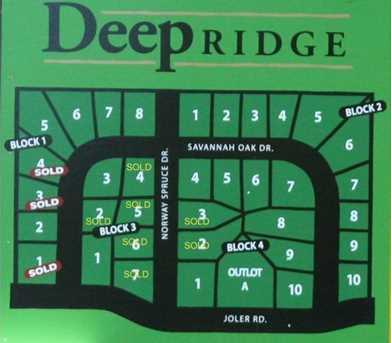 Lot 6 Blk 1 Savannah Oak Drive - Photo 8