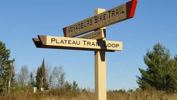 6419 Voyageurs Trail - Photo 14