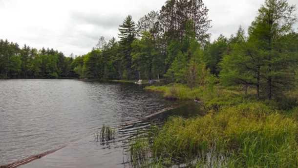 8631 N Blue Gill Lake Road - Photo 4