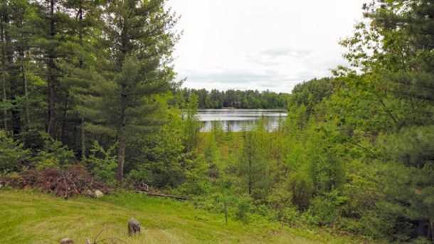 8631 N Blue Gill Lake Road - Photo 6