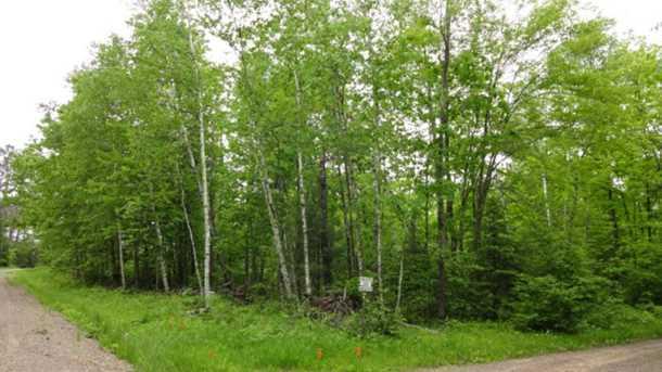 8631 N Blue Gill Lake Road - Photo 24