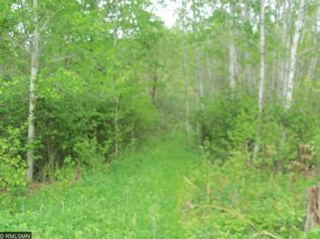 41854 County Road 343 - Photo 2
