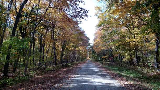 L3 B2 1st Ni Gig Trail Drive - Photo 4