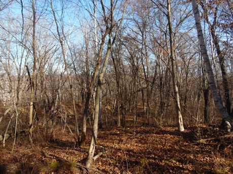 34855 Wild Mountain Road - Photo 14