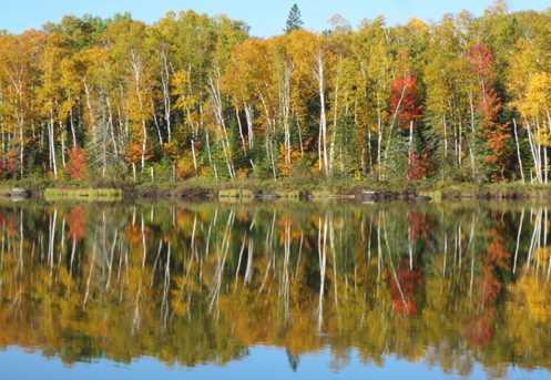 Lot 19 Two Moose Trail Wilson Lake - Photo 1