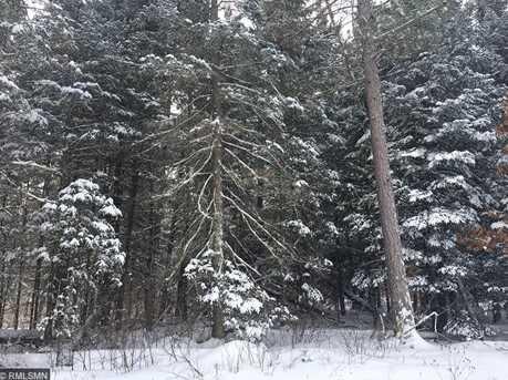Xxx Hard Pine Trail - Photo 6