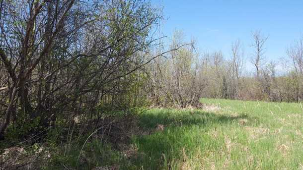 80 Acre 310th Avenue - Photo 12