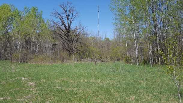 80 Acre 310th Avenue - Photo 6