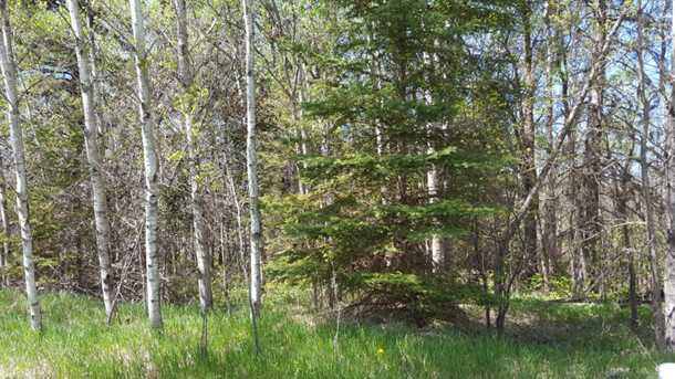 80 Acre 310th Avenue - Photo 14