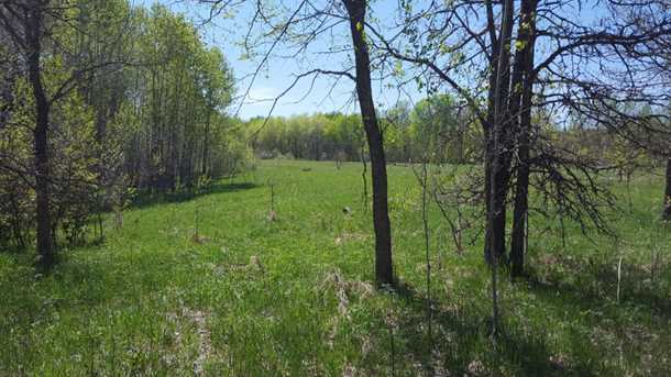 80 Acre 310th Avenue - Photo 4