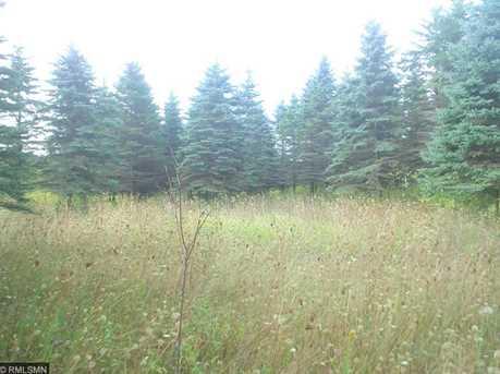1634 Majestic Pines Trail - Photo 6