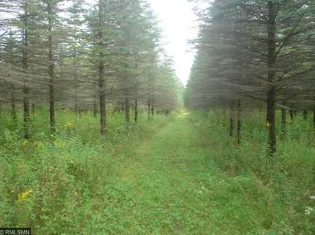 1634 Majestic Pines Trail - Photo 2