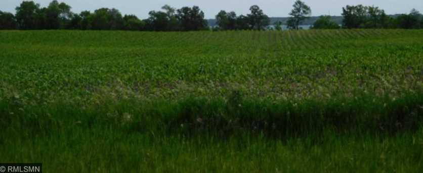 11 56 Acres Lake Ida Way NW - Photo 2