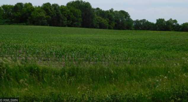 11 56 Acres Lake Ida Way NW - Photo 4