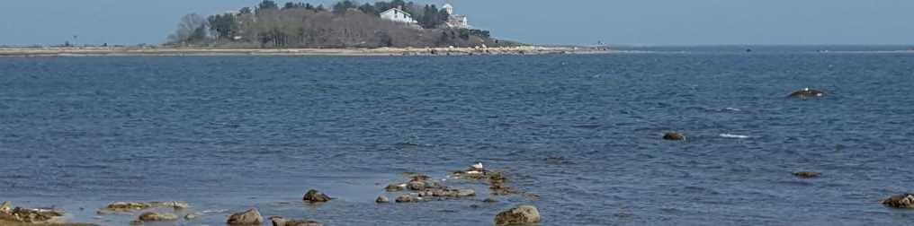 20 Howard Beach - Photo 4