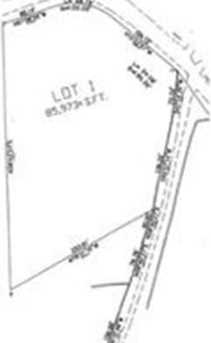 Lot 1 Cutler Rd - Photo 1