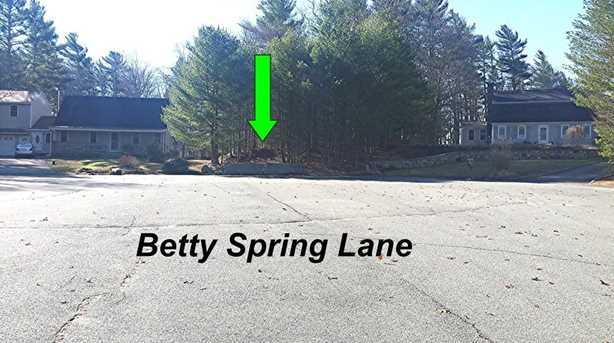0 Betty Spring Lane - Photo 1
