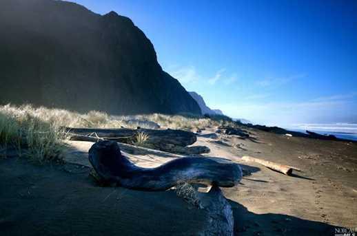 15300 Irish Beach Drive - Photo 18