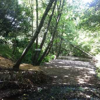 1690 Salmon Creek Road - Photo 8