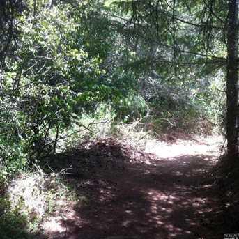 1690 Salmon Creek Road - Photo 16