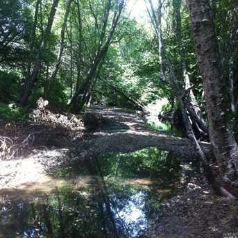 1690 Salmon Creek Road - Photo 6