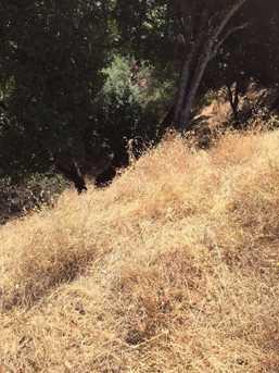 0 Steele Canyon Drive #67 - Photo 4