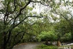 1605 Ronne Drive - Photo 6
