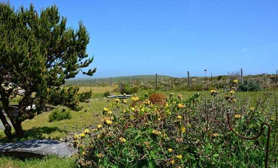 584 Oceana Drive - Photo 4