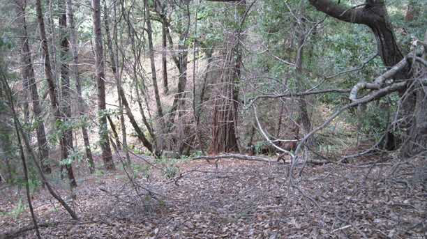 12901 Clow Ridge Road - Photo 18