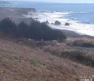 41301 Seascape Drive - Photo 1