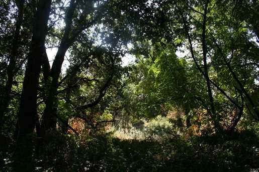0 Silverado Trail - Photo 28