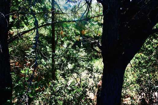 0 Silverado Trail - Photo 12