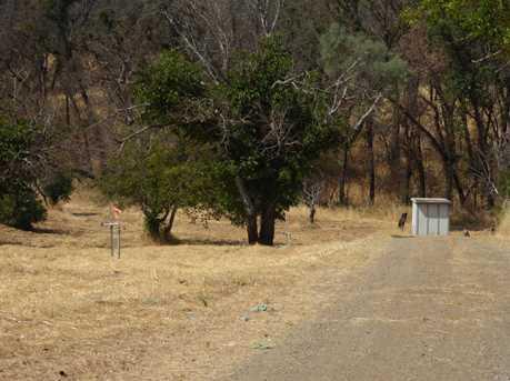 17201 Morgan Valley Road - Photo 8