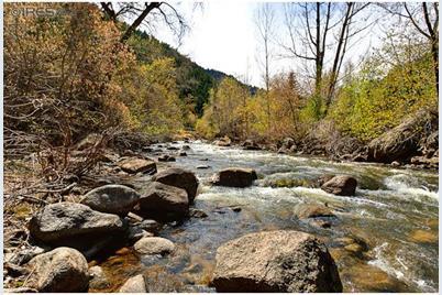 40428 Boulder Canyon Dr - Photo 1