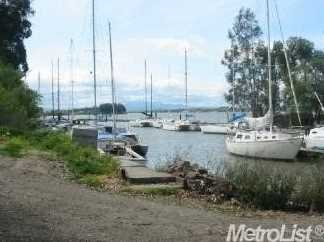 16264 State Highway 160 Marina - Photo 2