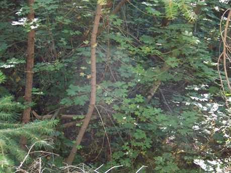 0 10 Acres Starkes Grade Rd - Photo 4