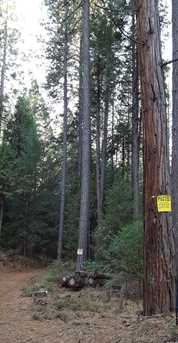 5  Acres Cable Road - Photo 4