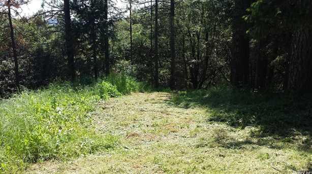 15 Mosquito Ridge Road - Photo 6