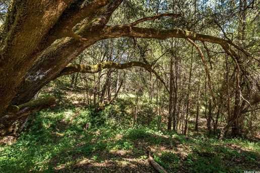 14 Cedar Pines Drive - Photo 8