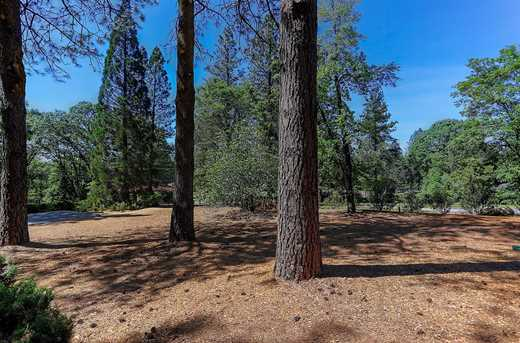 10864 Alta Sierra Drive - Photo 12