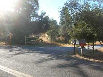 10  Acres Dream Ranch Circle - Photo 6