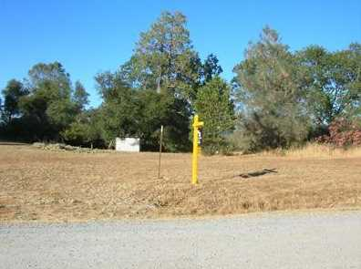 10  Acres Dream Ranch Circle - Photo 2
