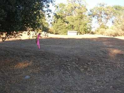 10  Acres Dream Ranch Circle - Photo 18