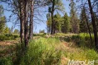 0 Elk Ranch Road - Photo 4