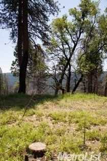 0 Elk Ranch Road - Photo 8