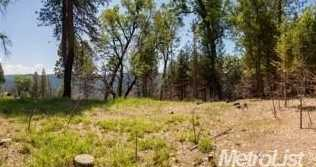 0 Elk Ranch Road - Photo 10